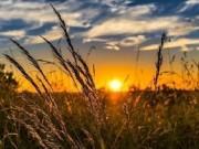 العلامي: توقعات بانخفاض درجات الحرارة بدءا من الأحد المقبل مع احتمالية هطول أمطار
