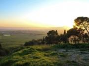 صباح الكوفية | حالة الطقس في فلسطين