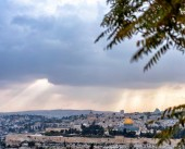 شاهد|| الطبيعة الفلسطينية بمنطقة خربة العلقة قرب بلدة أبو غوش في القدس المحتلة