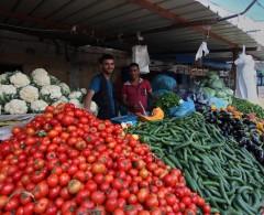 غلاء أسعار الخضروات يثقل كاهل المواطنين في القطاع