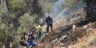 بالصور   اندلاع حريق كبير في أحراش وادي القف غرب الخليل
