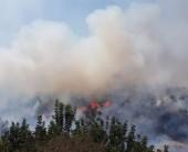 طائرات تشارك في إخماد حريق اندلع اليوم شمال غرب القدس المحتلة