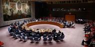 53 عاما على القرار الدولي الصادر عن مجلس الأمن التابع للأمم المتحدة242