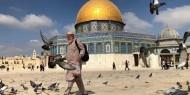 عكرمة صبري: مخططات الاحتلال لتهويد المدينة المقدسة فاشلة