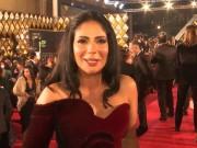 بالفيديو|| 80 فيلما من 40 بلدا تشارك في مهرجان القاهرة السينمائي الدولي