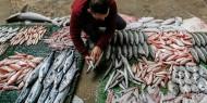 استبدال اللحوم الحمراء بالأسماك يقلل خطر الإصابة بأمراض القلب