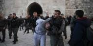 الاحتلال يعتقل شابا ويعتدي عليه بالضرب قرب المسجد الأقصى