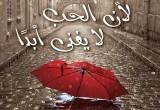 """الكاتبة الفلسطينية آية رباح تصدر روايتها الجديدة """"لأن الحب لا يفنى أبدا"""""""