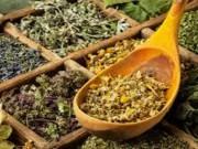 بالصور   أعشاب تساعد على تنزيل الدورة الشهرية