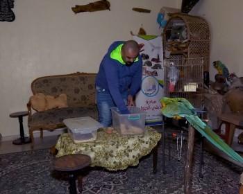 """رشيد عنبر.. شاب فلسطيني يحول منزله لـ """" أدغال حقيقية"""""""