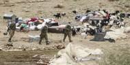 تقرير: الأغوار الشمالية في مرمى سياسة الاحتلال.. وتصاعد النشاط الاستيطاني