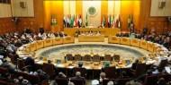 مصر: اجتماع وزراء الخارجية العرب أكبر دعم للقضية الفلسطينية