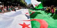 الجزائر: إعلان نتائج الانتخابات البرلمانية خلال أيام