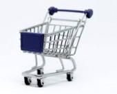 آراء المواطنين حول آلية التسوق الأكثر تناسبا معهم