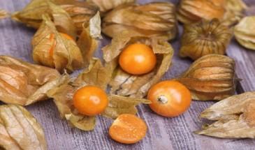 فوائد تناول فاكهة الحرنكش