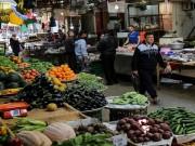 أسعار المنتجات الزراعية فى أسواق غزة