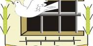 نادي الأسير: الاحتلال اعتقل 54 مواطنا من جنين خلال الشهر الجاري