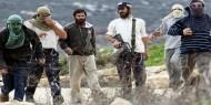 فيديو يوثق لحظة إطلاق مستوطنين النار على فلسطينيين