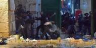 الخارجية المصرية تدين اقتحام الاحتلال لباحات المسجد الأقصى