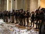 بلجيكا تدعو إسرائيل لوقف التصعيد في الأقصى واحترام الأماكن المقدسة