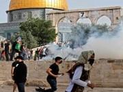 الأردن والسعودية يؤكدان ضرورة اتخاذ جهد دولي لحماية الفلسطينيين من انتهاكات الاحتلال