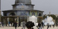 بالفيديو   قوات الاحتلال تقتحم المسجد الأقصى وتستهدف المصلين بالرصاص المطاطي