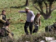 الاحتلال يطلق العنان لإرهاب المستوطنين في الضفة