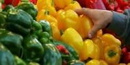 أسعار المنتجات الزراعية في أسواق غزة اليوم الأحد