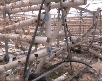 خاص بالصور والفيديو|| قذائف العدوان تدمر أول مشروع من نوعه للزراعة المائية في فلسطين