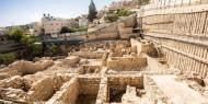 بالصور   من 80 مليون سنة.. اكتشاف أسنان سمك قرش في القدس