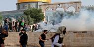 """""""مجلس الأوقاف الإسلامية"""" يحذر من تصاعد الأوضاع في المسجد الأقصى"""